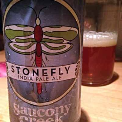 Saucony-creek-stonefly-ipa