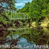 Carol Brightbill