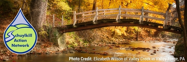 photo credit Elizabeth Wilson of Valley Creek in Valley Forge PA